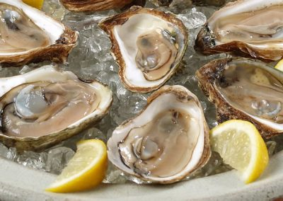 Oysters on the Half Shell Platter